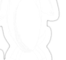 Chilly Penguin (white) Sticker