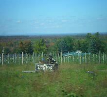 Farmers field  by megansavoie