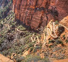 """""""Angels Landing"""" by activebeck2012"""