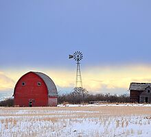 Abandoned Winter Prairie by Tracy Deptuck