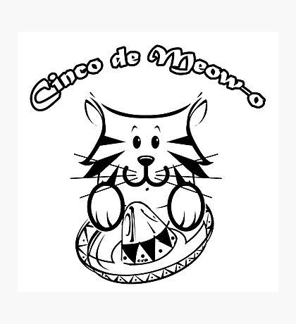 Cinco de Meow-o Photographic Print