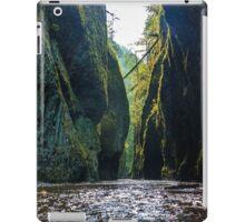 Oneonta Gorge iPad Case/Skin