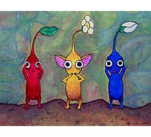 Pikmin: See No Evil, Speak No Evil, Hear No Evil Photographic Print