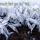 Breath by Tracy Deptuck