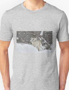 Snowy Nose - Timber Wolf aka Grey Wolf Unisex T-Shirt