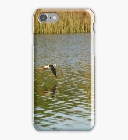 bird over water iPhone Case/Skin