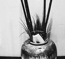 Pot by Dan Mitchell