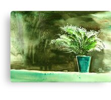 Bay window plant Canvas Print