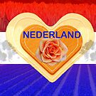 Netherlands - country of flowers by Arie Koene