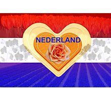 Netherlands - country of flowers Photographic Print