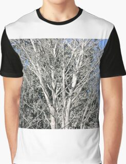 tree after eruption of Mount Merapi Graphic T-Shirt