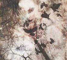 Ravens by thebrink