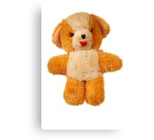 furry teddy bear Canvas Print