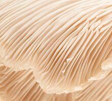 Silky Pleats by Marilyn Cornwell