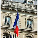 French Flag by Claire McCall