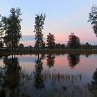 Lake Mirror by ienemien