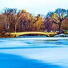 Central Park by A.David Holloway