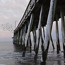 Virginia Beach Winter by Sunshinesmile83