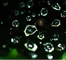 Web Droplets by HectorCantres