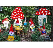 Gnome family Photographic Print