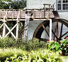 Amish Watermill by Polly Peacock
