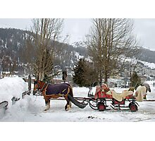 Anyone interested in a sleigh-ride? Photographic Print