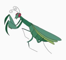 Cute Praying Mantis by SaradaBoru