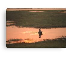 Hippo yawning in sunset Canvas Print