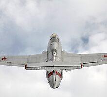Aero L-29 Delfin by mrivserg