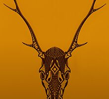 Deer skull by Ciarán Ward