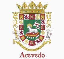 Acevedo Shield of Puerto Rico by William Martin