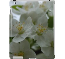 White Apple Blossoms iPad Case/Skin