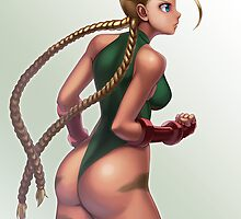 Cammy by hybridmink