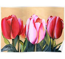 Summer Tulips Poster
