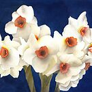 White Bouquet by Ken Powers