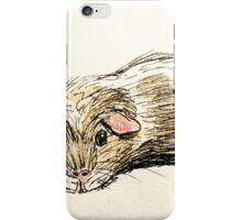 Muffin the guinea pig iPhone Case/Skin