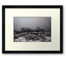 """Winter Snowstorm"" Framed Print"