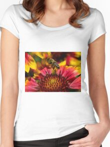 Busy Buzzing Bee Women's Fitted Scoop T-Shirt