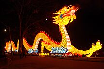 Chinese dragon in the Netherlands by Arie Koene