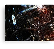 This Space Is Full (Astrophylite) Canvas Print