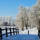 Winter in my home town by Arie Koene