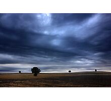 The silent sentinels of the borderline Photographic Print