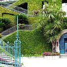 Green house by Arie Koene