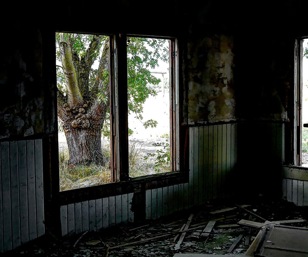 Is Everything Lost ? by Charles & Patricia   Harkins ~ Picture Oregon