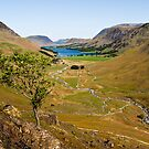 Warnscale Bottom - Buttermere by David Lewins
