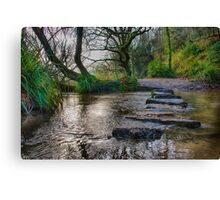 St Catherine's Woods II Canvas Print
