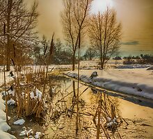 Winter Landscape 2, Southern Germany by Mark Bangert