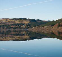 Lake Vrynwy by Care Johnson