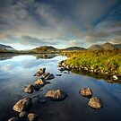 Scotland - Morning Light on Loch Ba by Angie Latham