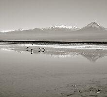 Vast Salt Flats by acarp10